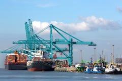 Огромный контейнеровоз будучи разгржанным с кранами в contai Антверпена Стоковые Изображения RF