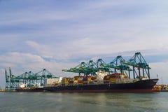 Огромный контейнеровоз нагрузил с кранами в контейнерном терминале Антверпена Стоковые Изображения RF