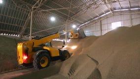 Огромный объект хранения аграрных урожаев Телескопичный обработчик при ковш работая на покрытом навальном запасе Telehandler сток-видео