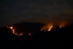 Огромный огонь куста Стоковые Изображения