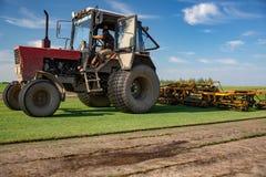Огромный трактор в поле - в славном голубом солнечном дне стоковые фото