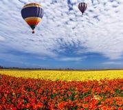 2 огромных воздушного шара мульти-цвета Стоковые Изображения RF