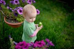огурец младенца имея немногую некоторый ярд Стоковое фото RF