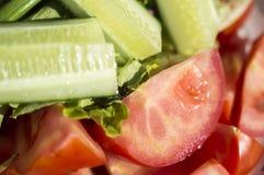 Огурец, томат, зеленые цвета Стоковое Изображение RF