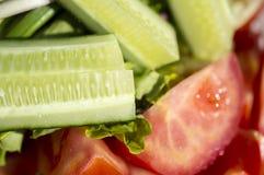 Огурец, томат, зеленые цвета Стоковые Изображения