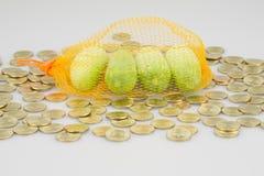Огурцы в оранжевый отдыхать сетки помещенный на золотых монетках кучи Стоковые Изображения RF