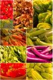 огурцы мозоли коллажа колокола включая другой овощ томата перца Стоковое Изображение RF