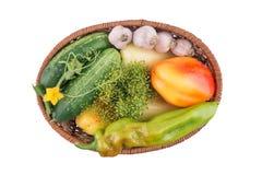Огурцы, перец и чеснок изолированные на белой предпосылке Стоковое Фото