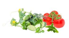 Огурцы с стержнем, ветвью томатов и зелеными цветами Стоковая Фотография RF
