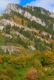 Огден River Valley стоковые фотографии rf