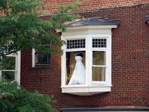 одевать окно стоковая фотография