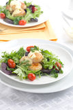 одевать scallop салата шафрана Стоковая Фотография RF