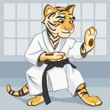 Одевают тигра в кимоно приниманнсяое за карате Стоковое Фото