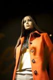 одетьнная думмичная модельная зима Стоковые Фотографии RF