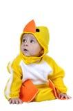 одетьнный цыпленок младенца стоковое фото