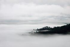 Одеяло тумана и холмов - взгляда birdseye стоковое фото rf