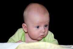 одеяло newborn Стоковая Фотография