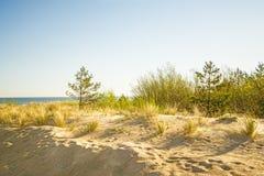 Одинокий пляж Балтийского моря с голубым небом и дюнами Стоковое фото RF