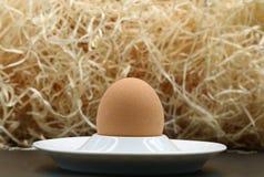Одиночное яичко в чашке с деревянными шерстями стоковые изображения rf