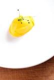 Одиночный ветроуловитель красочного оранжевого тропического мороженого манго Стоковые Изображения