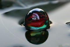Одиночный стеклянный мраморный шарик Стоковые Фотографии RF