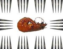 Один большой зажаренный конец вверх по картине креветки и 10 seamles вилок Стоковая Фотография