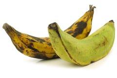 Один зрелый и один незрелый банан выпечки (подорожник) Стоковые Фото