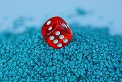 Один красный куб игры в куче малых голубых камней Стоковая Фотография