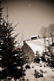 Один малый дом на горе в пуще зимы Стоковые Изображения