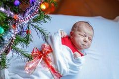 Один младенец недели старый newborn обернутый в одеяле около рождественской елки Стоковые Фото