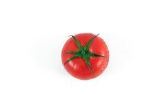 один томат Стоковое Изображение RF