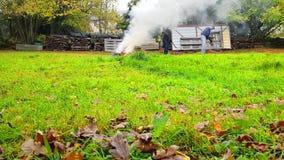 Один человек времени midle собирает упаденные листья акции видеоматериалы