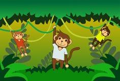 Одичалая обезьяна Стоковые Фото