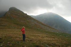 Одичалая природа прикарпатских гор стоковое изображение rf