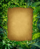 Одичалая рамка джунглей бесплатная иллюстрация