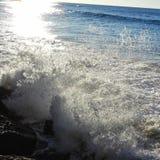 Одичалое море стоковые фото