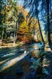 Одичалое река Doubrava, ландшафт осени Стоковые Изображения