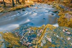 Одичалое река Doubrava, ландшафт осени Стоковые Фото