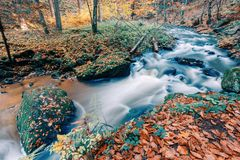 Одичалое река Doubrava, ландшафт осени Стоковое Изображение