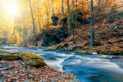 Одичалое река Doubrava, ландшафт осени Стоковое Фото