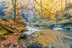 Одичалое река Doubrava, ландшафт осени Стоковая Фотография