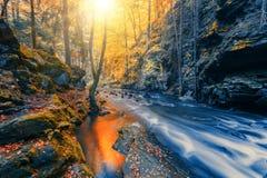 Одичалое река Doubrava, ландшафт осени Стоковые Фотографии RF