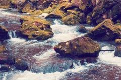 Одичалое река Doubrava, ландшафт осени Стоковое фото RF