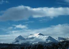 Одичалые гусыни летая над горой робы икры Стоковые Фото