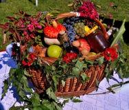 Одичалые овощи и плодоовощи осени стоковая фотография