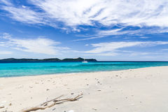 Одичалые пляж и катамаран стоковое фото rf