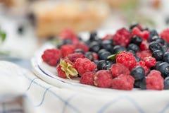 Одичалые ягоды свежие от древесины стоковое фото