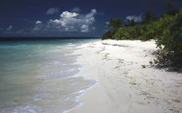 Одичалый и дезертированный мечт пляж Стоковая Фотография