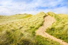 Одичалый ландшафт с песчанными дюнами - след Ирландского природы к пляжу стоковые фотографии rf