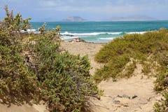 Одичалый пляж в Caleta de Famara, острове Лансароте, Испании стоковые фото